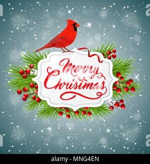 Vettore banner di Natale con rosso cardinale bird, ramo di abete e saluto l'iscrizione. Buon Natale scritte Immagini Stock
