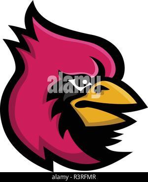 Icona di mascotte illustrazione della testa di un cardinale, nella famiglia Cardinalidae, un uccello passerine trovati in America noto anche come il cardinale-grosbeak e il cardinale Immagini Stock