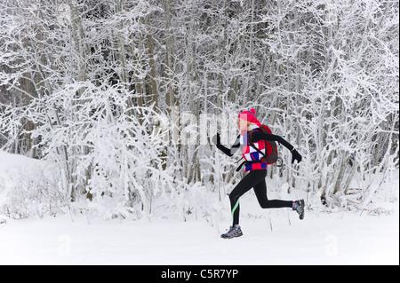 Un pareggiatore esegue rapidamente attraverso un bosco d'inverno. Immagini Stock