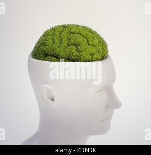 Impianto sagomata come un cervello umano - intelligenza e il concetto di memoria 3D illustrazione Immagini Stock