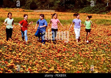 Felice multi razziale tween preteen ragazzi e ragazze felicemente in esecuzione attraverso il campo dei fiori in primavera © Myrleen Pearson ...Ferguson Cate Immagini Stock