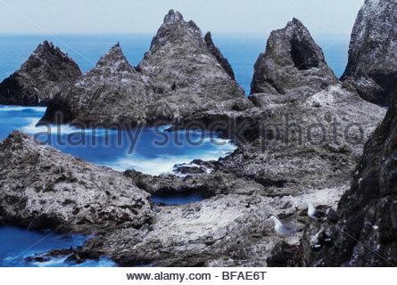 Farallon Islands, Golfo di Farallones National Marine Sanctuary, California Immagini Stock